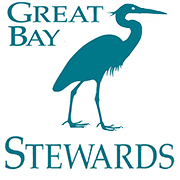 Great BAy Stewarts